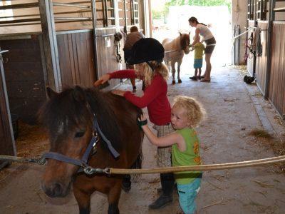Hestene gøres klar
